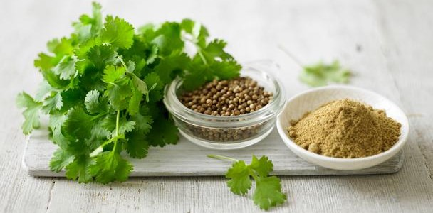 8 Reasons Why Coriander Is A Health Powerhouse