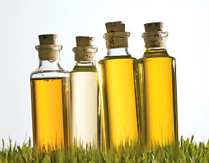 Not All Fats Are Created Equal (The Top 3 You Should Be Eating)
