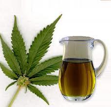 Is Cannabis the Next Big Antioxidant?