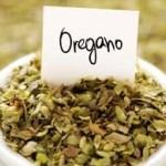 7 Reasons to Add Oregano to Your Life