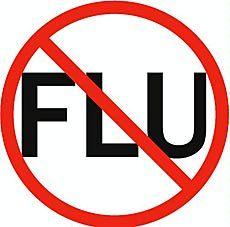 No-flu