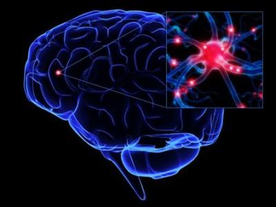 turmeric-neurogenesis